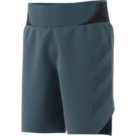 """adidas TERREX AGR Alla Shorts 9"""" Men legacy blue"""